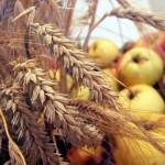 Apfel und Getreide